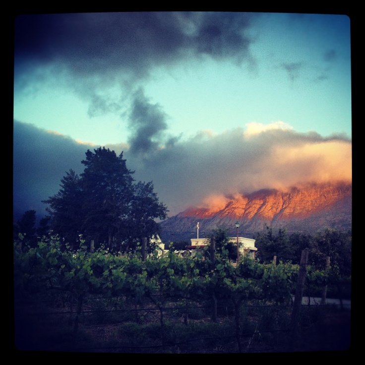#sunset #winelands #southafrica