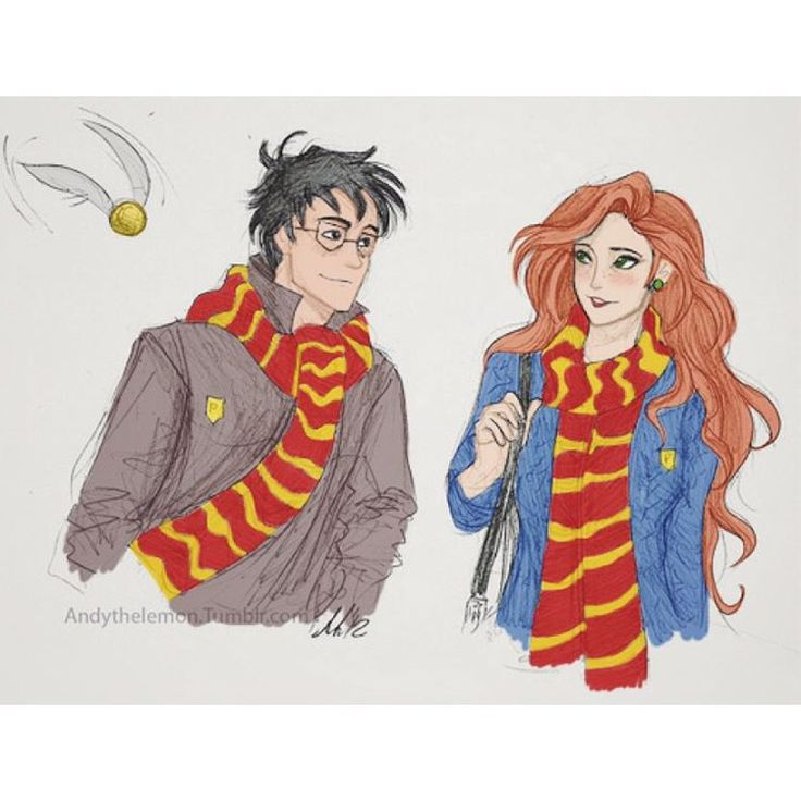 IS THAT LILY OR GINNY, AND HARRY OR JAMES!?! WHY DO THEY HAVE TO LOOK THE SAME?!?