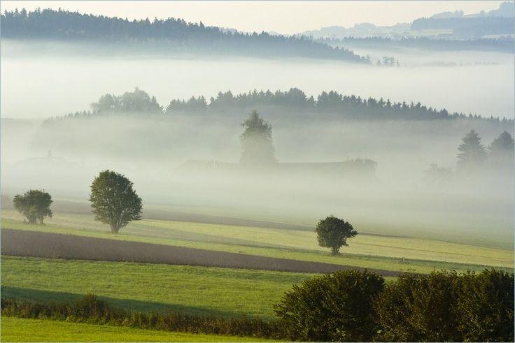 ráno za hranicemi, Bad Leonfelden