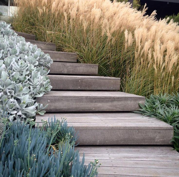 "1,106 Likes, 18 Comments - Nathan Burkett Design (@nathanburkettdesign) on Instagram: ""Mornington Peninsula garden thriving in Autumn"""