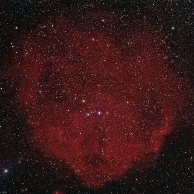 23 отметок «Нравится», 1 комментариев — Astrobitácora (@astrobitacora) в Instagram: «El catálogo Sharpless: la Nebulosa del Pez Escalar (Sharpless 264). Recibe ese nombre por su…»