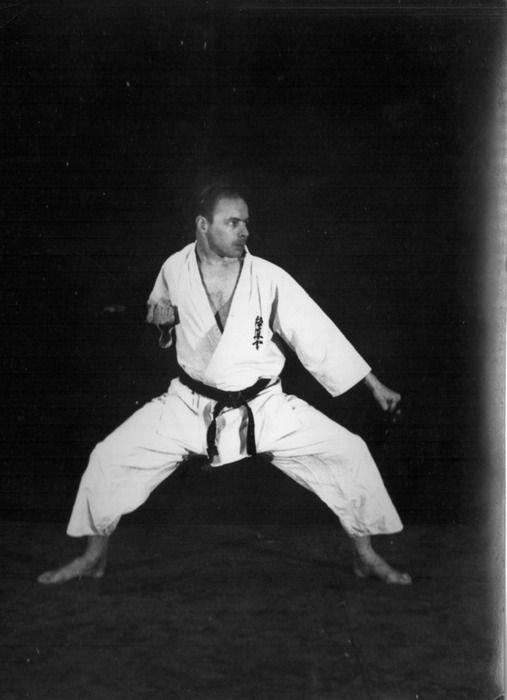 Rinus Schulz Kyokushinkai karate, gedan barai