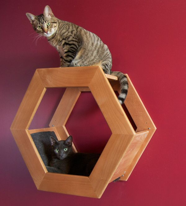 96 best cat furniture images on pinterest for Homemade cat bed