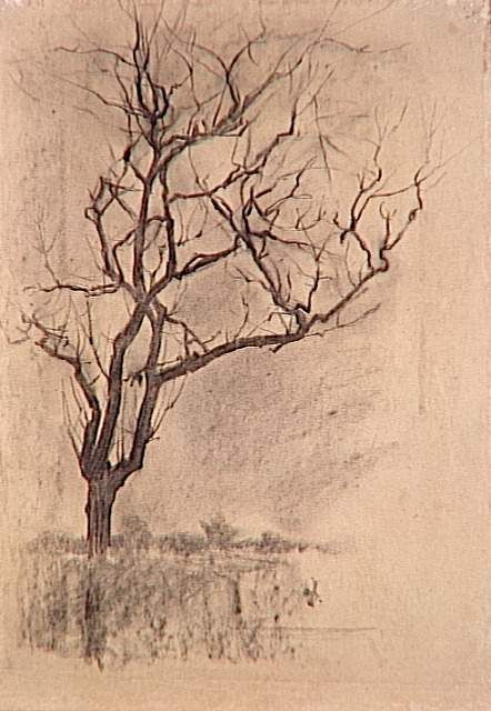 sweet looking tree by Piet Mondrian