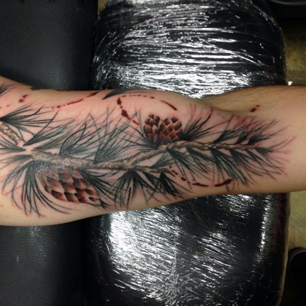 326 best images about forest nature tattoo on pinterest for Pine cone tattoo