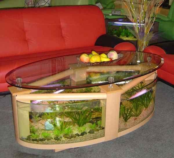Best 25 coffee table aquarium ideas only on pinterest for Aquarium cocktail table