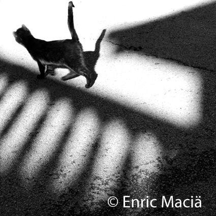 ©Enric Maciä