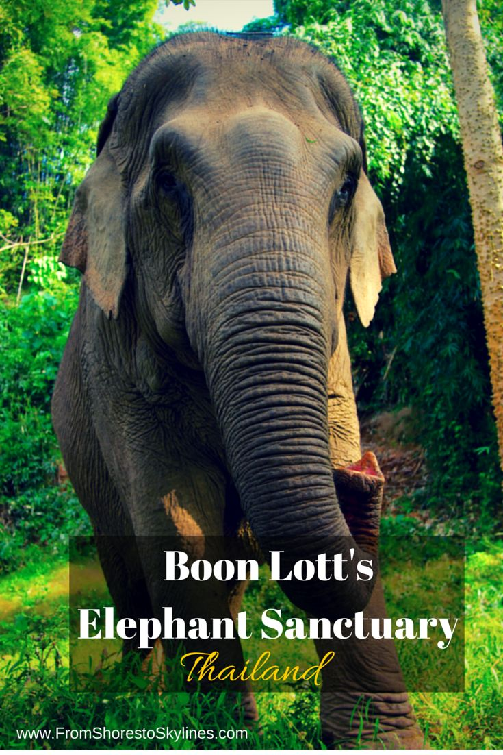 Our time at Boon Lott's Elephant Sanctuary in Thailand and how it changed the way I travel.