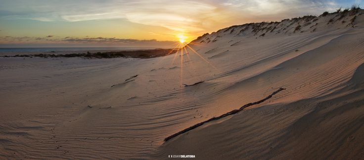 Beautiful sunset in dunes at Los Cabos #josafatdelatoba #cabophotographer #cabosanlucas #loscabos #bajacaliforniasur #mexico #dunes