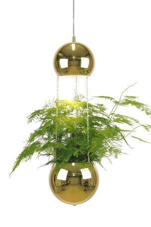 Ellos Home Fönsterlampa Planter