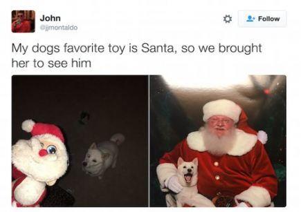 Funny Christmas Pics Humor So True 57 Trendy Ideas