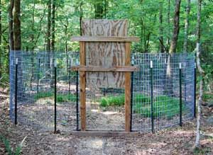 Corral Trap for Feral Pigs