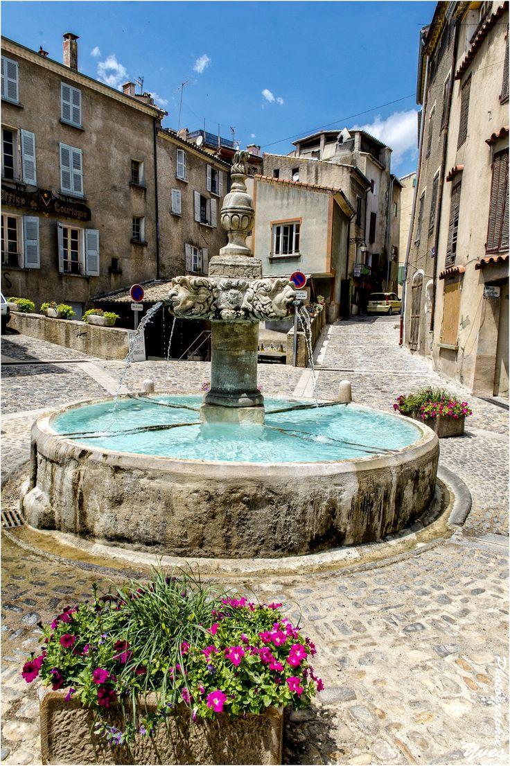 Valensole ~ Provence ~ Alpes-Côte d'Azur ~ France
