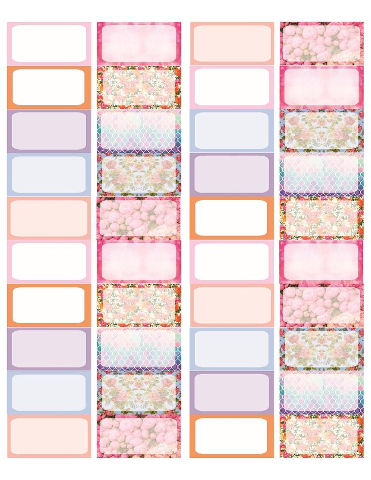 Organized Binder Clipart 3516 best images about...