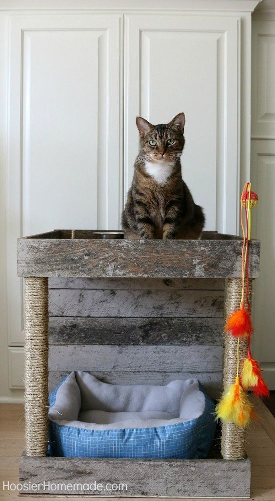 It's time to pamper our kitties a bit! This Cat Condo that is made from a wood pallet has a spot for feeding, relaxing, playing and scratching. [media_id:347842…