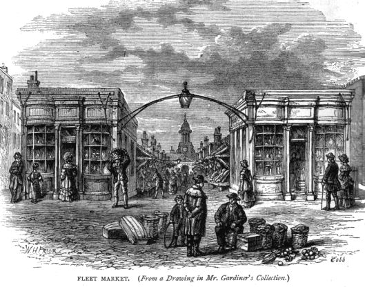 Fleet Market from W. Thornbury, Old and New London, vol. 2, p. 498.