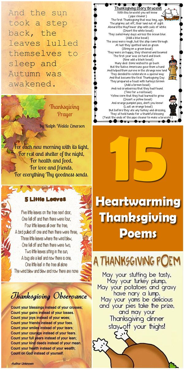 Learn about the origin and history of 15 Heartwarming Thanksgiving Poems, or browse through a wide array of 15 Heartwarming Thanksgiving Poems-themed crafts, de