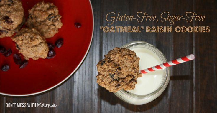 Grain Free Oatmeal Raisin Cookie Recipe - Don't Mess with Mama