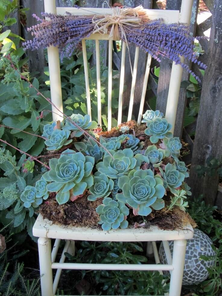 Easy Chair Planter with Succulents and Lavender – gardening