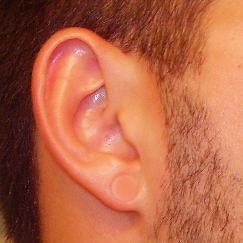 Best 25+ Piercing retainers ideas on Pinterest | Nose ...