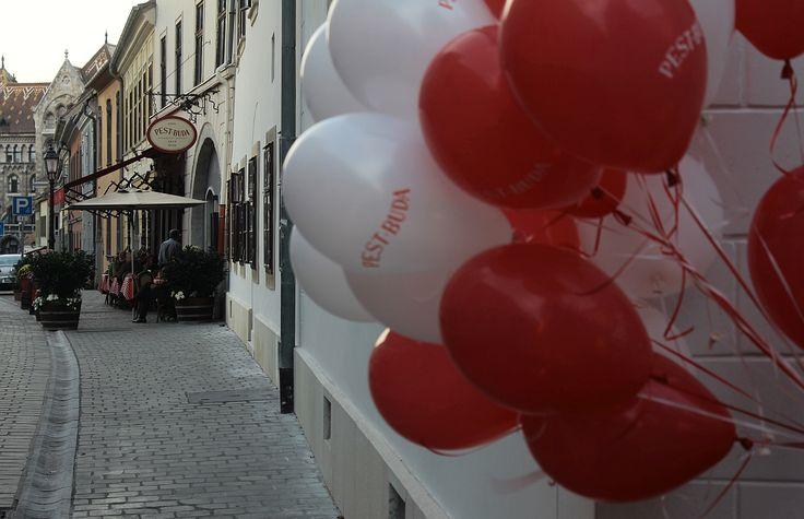 Pest-Buda http://www.pestbudabistro.hu/ | Terasz #budapest #restaurant #pestbuda #restaurantdesign