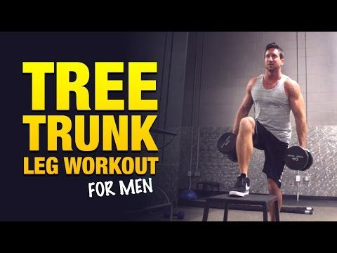 leg workouts for men the big tree trunk leg workout