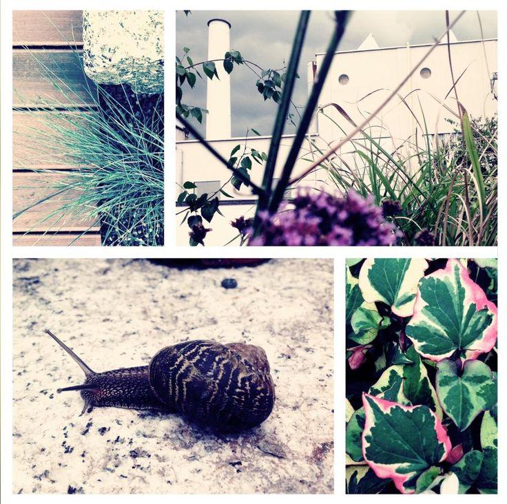Temporary Garden 18/06 - 18/10 2015 Milan / Location: Tortona 9 Fashion District, Showroom Casile & Casile Fashion Group / Design and art director: Green Bricks and Monica Botta / photo by Monica Botta