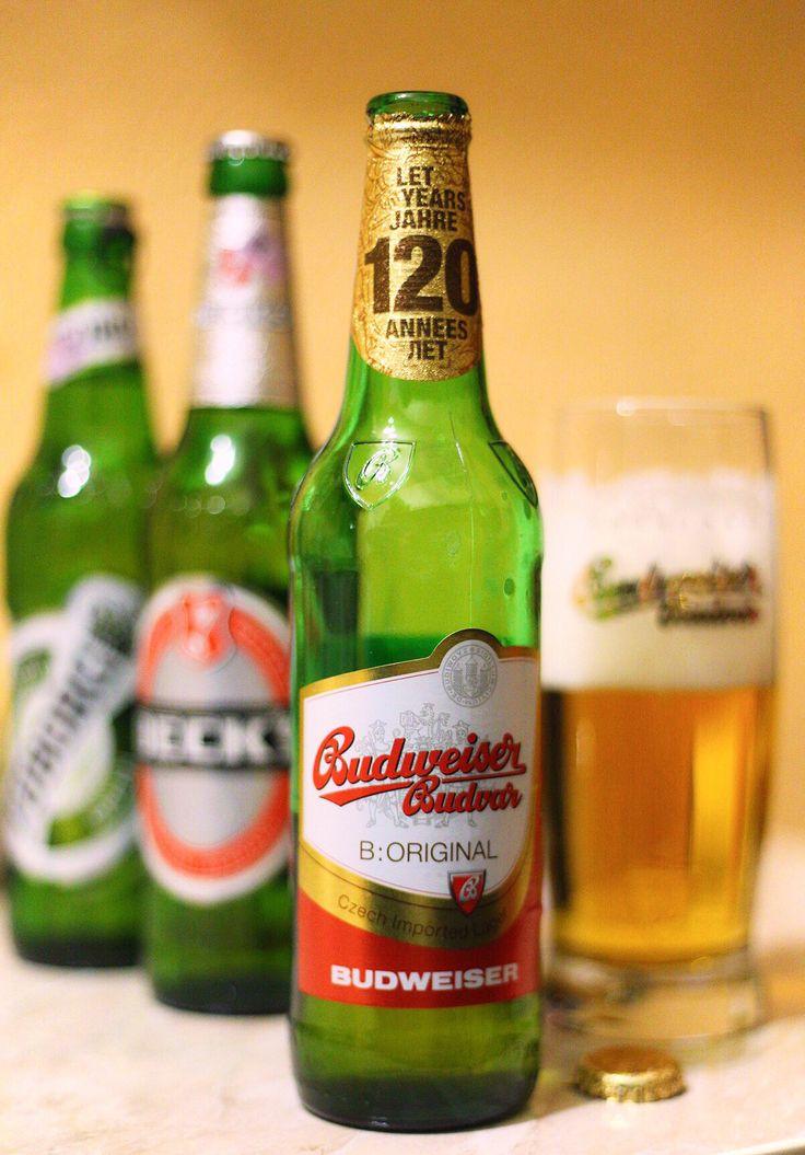 Budwieser Budvar Beer