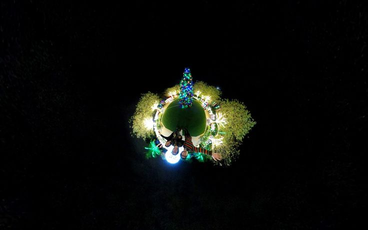 What's Happening: Holiday Lights in The Florida Botanical Gardens!