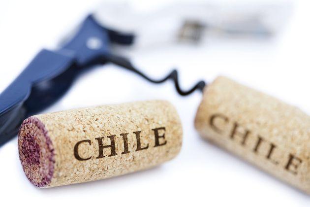 'Chile, País de Vinos y Montañas', el nuevo libro de vinos chilenos
