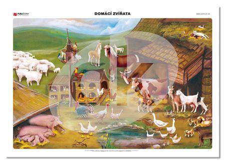 Domácí zvířata — datakabinet.cz