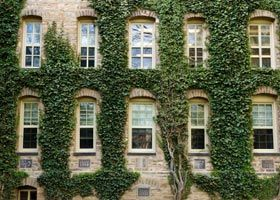 The Experts' Choice: The Public Ivies #ivyleague #creamofthecrop