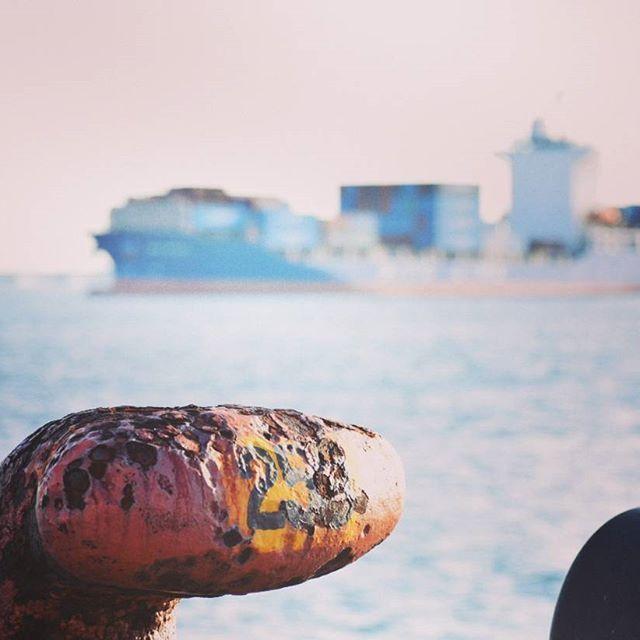 【makio.san】さんのInstagramをピンしています。 《コンテナを見つけると我慢出来ない  おはようございます  夕べ頑張ったのですが今日も仕事です  悔しいので早起きして三重県まで来てやりました  急がないと仕事遅刻しちゃう  #コンテナ #海 #空 #早朝 #船 #世界旅行 #青空 #雲 #一眼レフ #青 #conteiner #travel #instagramjapan #instagood #blue #nikon #goodmorning  #写真撮ってる人と繋がりたい  #写真好きな人と繋がりたい  #コンテナ撮ってる人と繋がりたい》