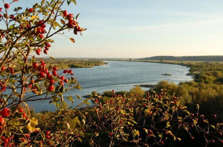 Wisła w okolicy Gniewu (The Vistula River near Gniew)