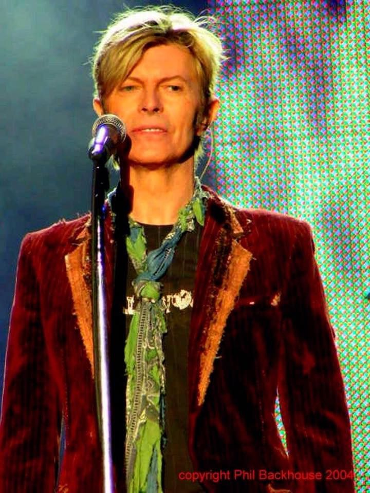 David Bowie costume made by Elise Fife (as Lichen-NYC ...