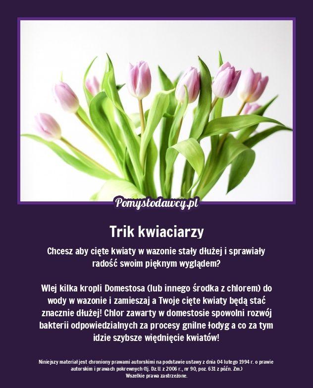 Tak Wydluzysz Czas Stania Cietych Kwiatow W Wazonie To Trik Kwiaciarzy Good Advice Simple Life Hacks Tips