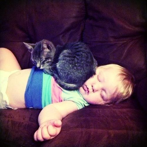 Cool Baby Names 2015 for Boys #pets #cats #sleep #cute #blonde