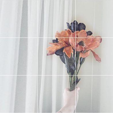 ___weekend coming 🌾/  • #flowers #photography #inspo #nonnalietta