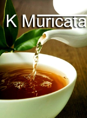 Herbal Tea for Curing Tumor and Cancer