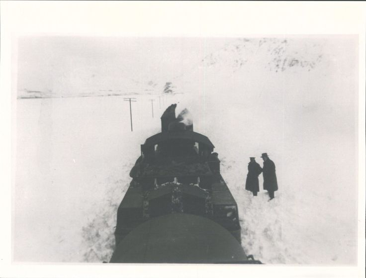 Snow scene (at Fairlight) | Hocken Snapshop