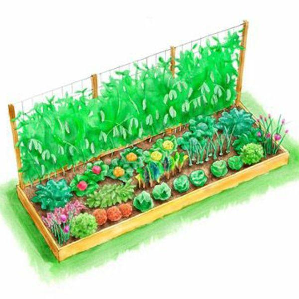 Die 25+ Besten Ideen Zu Gemüsebeet Auf Pinterest | Mischkultur Und ... Nutzgarten Anlegen Tipps Planung Gartengestaltung