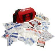Basic First Aid Kit including any Prescription Medications