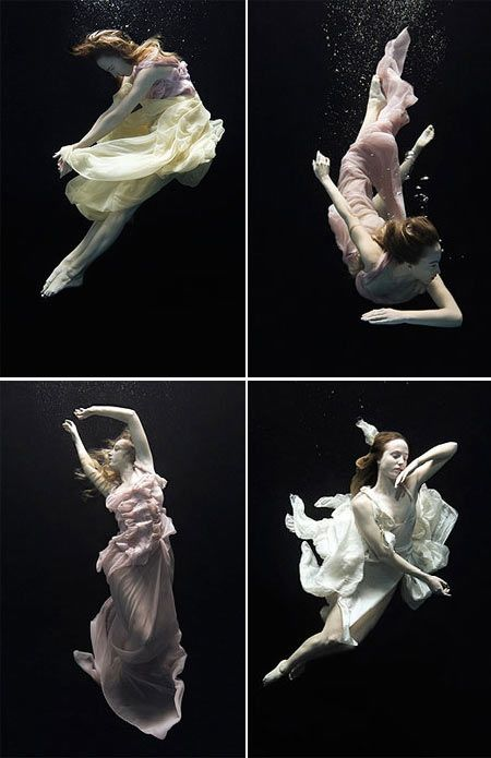Behind the Surface Underwater Photography Project..wauw!