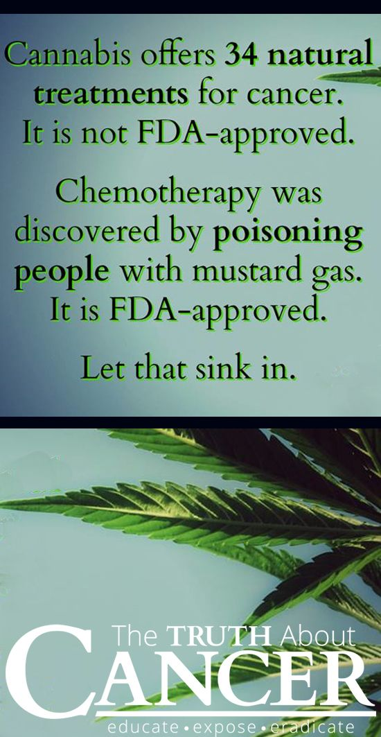 Just let that sink in, indeed. Cannabis is offers many health benefits and there is no reason to be scared of it! THIS is The Truth About Cancer!