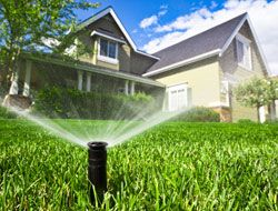An automated #irrigation system can actually help you save water while keeping your #lawn lush and healthy.
