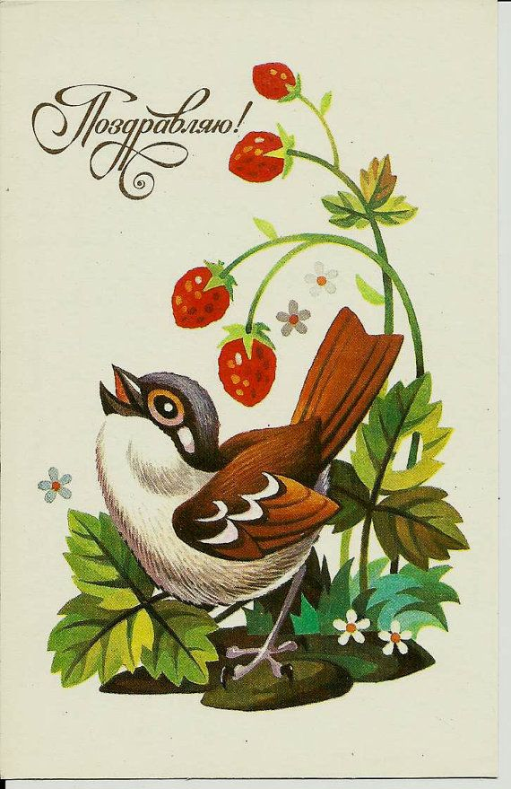 Sparrow  Vintage Russian Postcard by LucyMarket on Etsy, $3.50