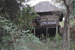 3 Day Kruger Treehouse & Private Game Lodge Safari