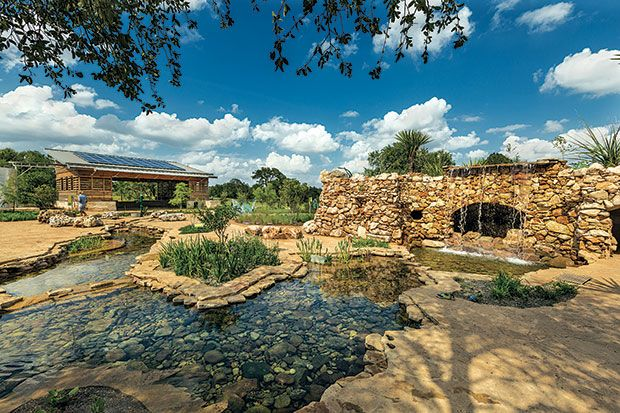 Lady Bird Johnson Wildflower Center - Damon and I just really like the feel of this place.