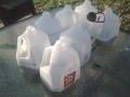 Create Mini Greenhouses Out of Plastic Milk Jugs