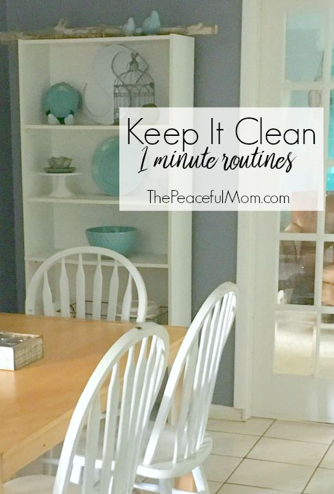 Keep It Clean 1-Minute Routines eCourse.